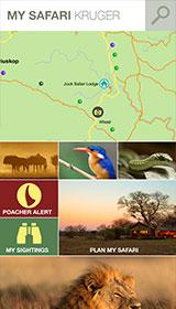 My Safari App